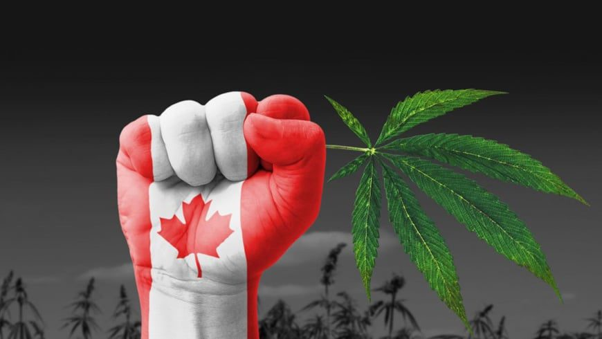 Marijuana is Legal Now – A day bright and dark at the same time for Canada!