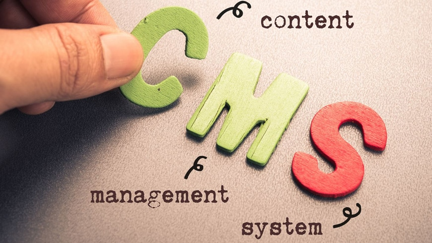 Here are the Best 8 tips to hire CMS Development Company at a low Budget