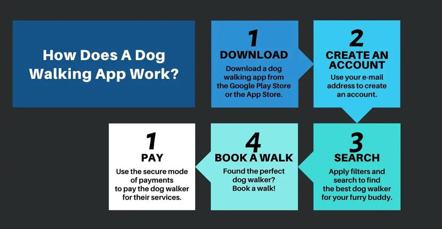 Dog Walking App Work